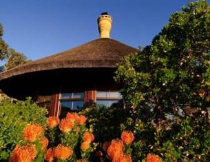 Grootbos, réserve privée en Afrique du Sud