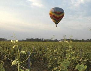 Les vignobles de la Bourgogne en Montgolfière