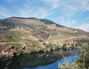 La vallée du Douro, pays du Porto