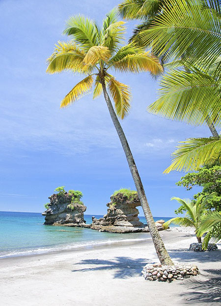 Farniente sur les plages de Sainte-Lucie