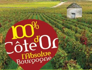 Bourgogne Rando Vignes : la nouvelle appli
