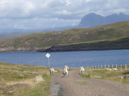 Summer Isles Scotland