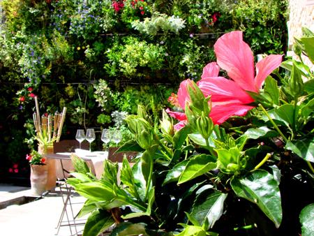 Les Jardins d'Aliénor, Patio
