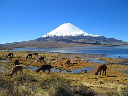 région des volcans au Chili