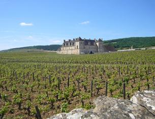 Du côté de chez moi : le Château du Clos de Vougeot