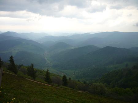 le Belchenen Forêt Noire