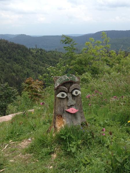 La route des Crêtes en Forêt Noire