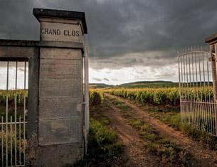 les Climats de Bourgogne classés au Patrimoine Mondial