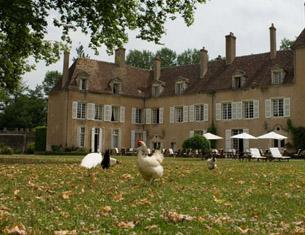 Menu végétarien 100% potager au Château Hôtel de Vault de Lugny