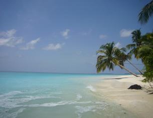 Séjour au Coco Palm aux Maldives