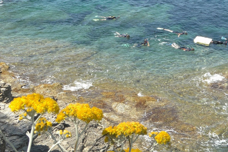 Sentiers sous-marins en Provence-Alpes-Côte d'Azur