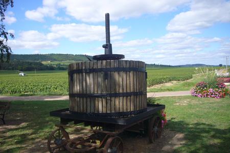 Puligny-Montrachet en Bourgogne