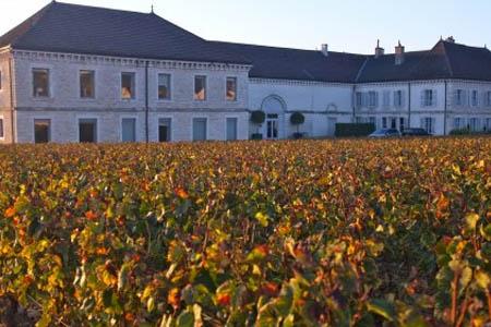 Chateau Chassagne-Montrachet