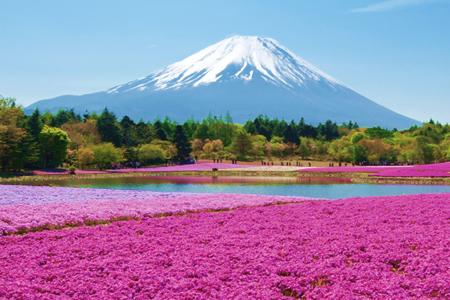 Le mont Fuji, au Japon