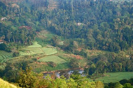Le Santani au Sri Lanka