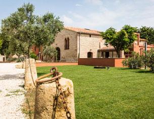 Chambres d'hôtes viticoles à Perpignan