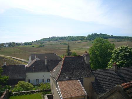 Vignoble de Mercurey depuis le Château de Chamirey