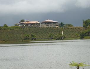 La route du Thé, la côte sud-est de l'île Maurice