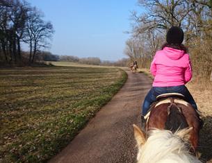 week-end, j'avais rendez-vous à Turcey en Côte d'Or pour une balade à cheval avec Locacheval.