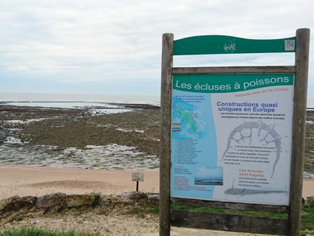 écluse à poissons, île d'Oléron