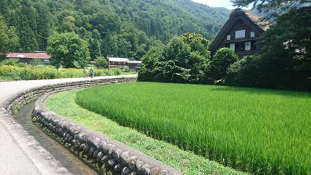 Shirakawago, Alpes Japonaises