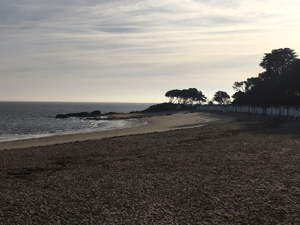 Le Bois de la Chaise à Noirmoutier