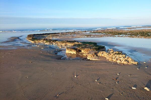 L'île d'Oleron en Vendée